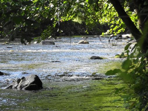 Rivière Vicdessos Pêche à la truite