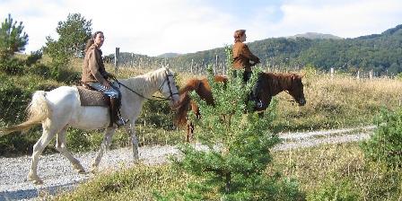 La Maison du Meunier Gîte Rural Promenade à cheval sur les montagnes environnantes