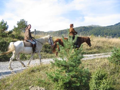 Promenade à cheval sur les montagnes environnantes