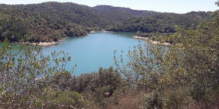 Ma Vie La Le lac