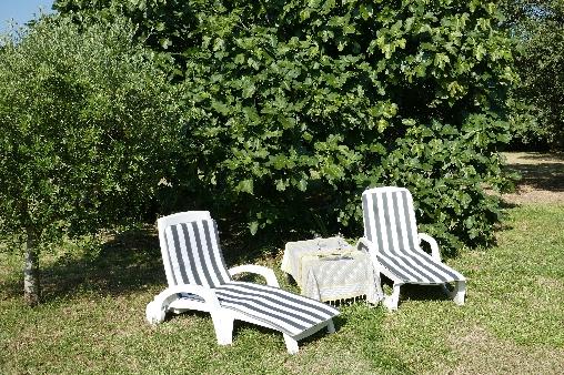 Le jardin, une invitation à la détente