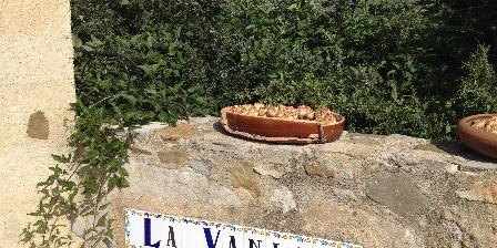 Domaine La Vanige Domaine La Vanige location de vacances avec piscine en Provence