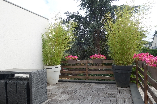 bed & breakfast Indre-et-Loire - Terrace