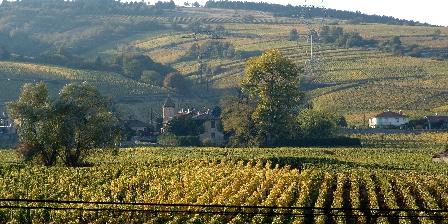 La Vigneraie de Fuissé The view from the house