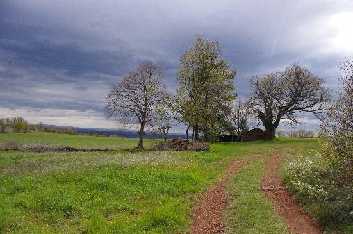 La causse rouge en haut de Roquetaillade et Castelmus