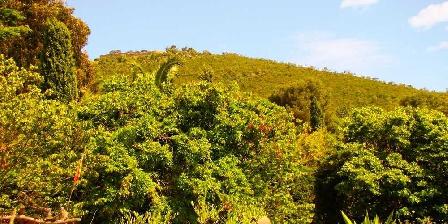 Le Mas de La Gavaresse Le Pénéquet La colline