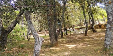 Les Chênes Verts Notre sous-bois