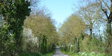 Gîte rural de La Chassière La route, du gîte vers le petit bois