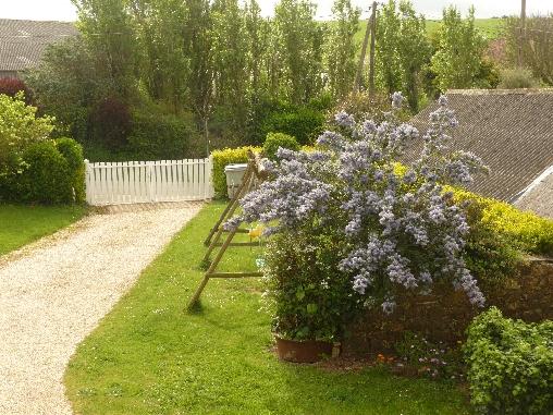 Pelouse, cour et jardin.