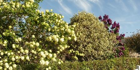Gite Les Gîtes de Kergorz > Clôture et jardin fleuri > Cliquez ici pour agrandir cette photo