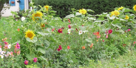 Gite Les Gîtes de Kergorz > Jardin  > Cliquez ici pour agrandir cette photo