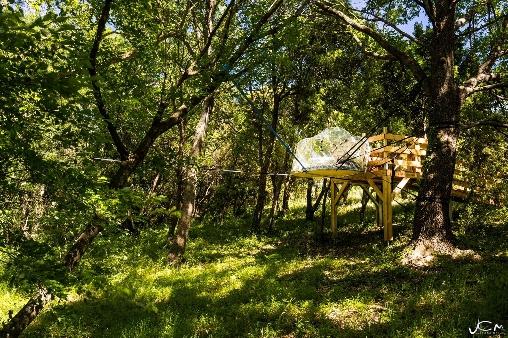 La visiobulle, une bulle perchée en hauteur en pleine forêt