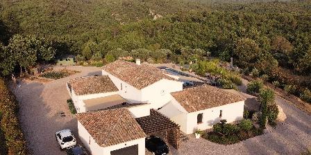 Villa Otilia Piscine 15x5