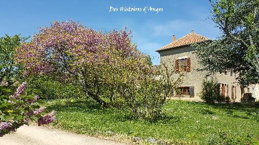 Gastezimmer Saône-et-Loire, ...