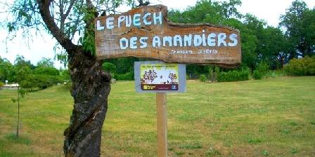 Le Puech des Amandiers Le Puech des Amandiers, Chambres d`Hôtes Villeneuve Sur Vère (81)