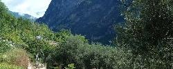 Gite Le Mont d'Olivine