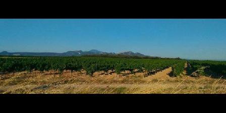 Terre De Vignes Terre De Vignes, Chambres d`Hôtes Camaret Sur Aigues (84)