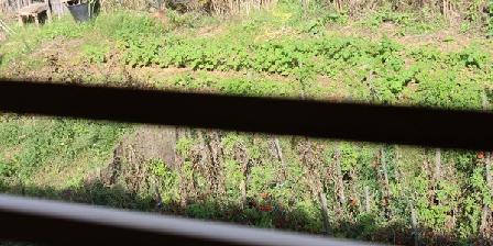 Les Vignes Les Vignes, Chambres d`Hôtes Six Fours Les Plages (83)