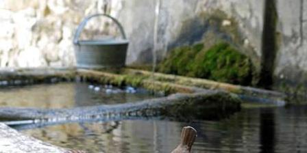 Le Mas de La Fontaine Le Mas de La Fontaine, Chambres d`Hôtes Le Pègue (26)