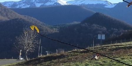 Ma Maison de Montagne Ma Maison de Montagne, Gîtes Asque (Bagnères De Bigorre) (65)