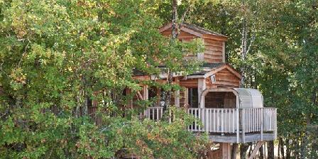 Bois des Nauzes Bois des Nauzes, Chambres d`Hôtes Seyches (47)