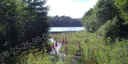 Gite Vallée des Lacs Gite Vallée des Lacs, Chambres d`Hôtes La Bresse (88)
