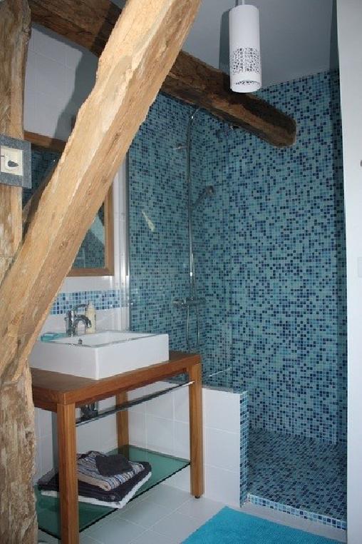 Chambre d'hote Aube - Le Coteau de L'orme, Chambres d`Hôtes Dosches (10)