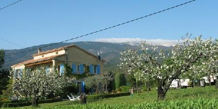 Les Cerisiers Les Cerisiers, Chambres d`Hôtes Bedoin (84)