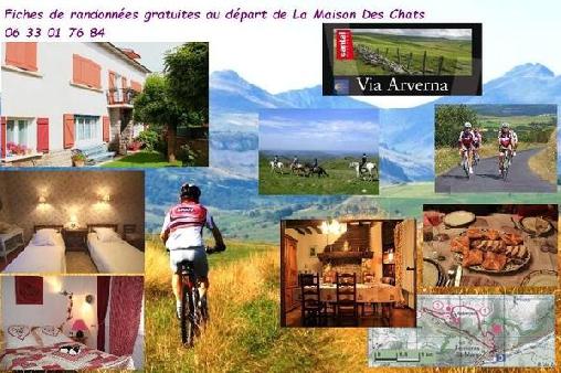 Chambre d'hote Cantal - La Maison Des Chats, Chambres d`Hôtes Saint Mary Le Plain (15)