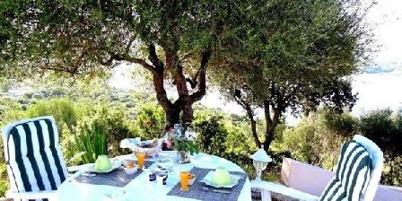 Villa-vetricella-corse Villa-vetricella-corse, Chambres d`Hôtes Olmeto (20)