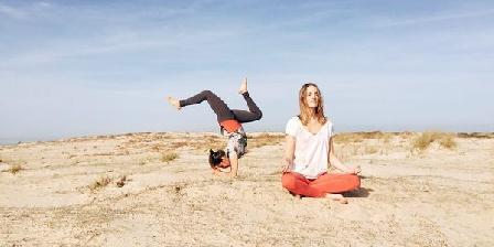 Yoga Searcher Yoga Searcher, Chambres d`Hôtes Bénesse Maremne (40)