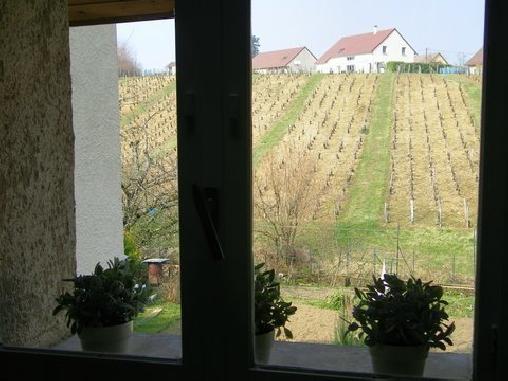 Gîte des Vignes, Gîtes Arbois (39)