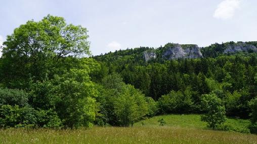 Chalet Alpes Nature & Vercors, Chambres d`Hôtes Lans En Vercors (38)