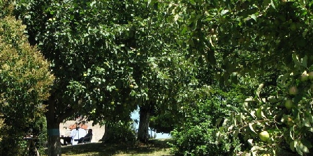Bois Petit Bois Petit, Chambres d`Hôtes Trentels (47)
