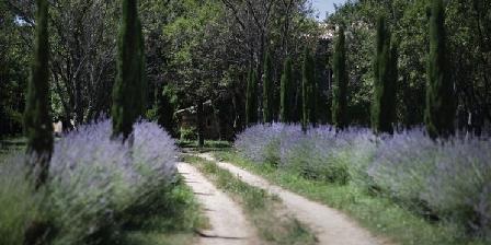 Domaine du Vivier Domaine du Vivier, Chambres d`Hôtes Saint Gervais Sur Roubion (26)