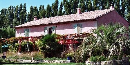 Gite Le Mas de La Chouette > Le Mas de La Chouette, Chambres d`Hôtes Saint Rémy De Provence (13)