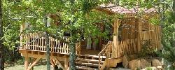 Chambre d'hotes La Cabane Du Lion Dor
