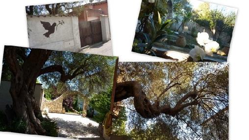 Le Mas De Rena Chambre D'hotes Antibes, Chambres d`Hôtes Antibes (06)