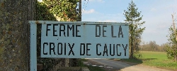Bed and breakfast La Ferme De La Croix De Caugy