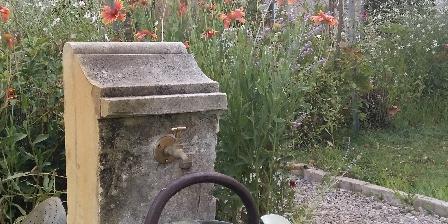 Le Coeurisier In the garden