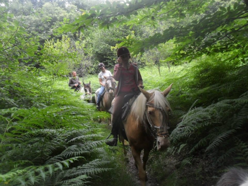 Randonnée Equestre autour de Missandre