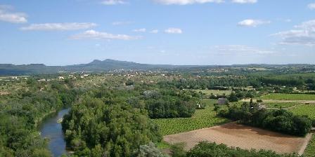 Les Mimosas Saint Ambroix, vue sur la Cèze et les vignobles