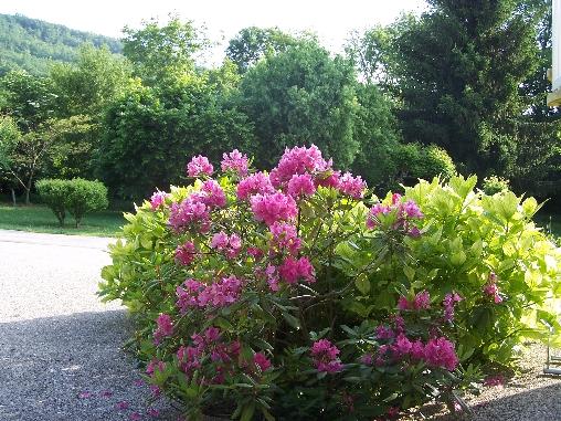 Chambre d'hote Ariège - Jardin, Chambres d'hôtes