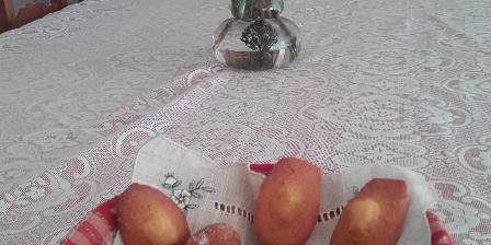 Aux 4 Saisons Madeleines au citron et au miel Chambres d'Hôtes
