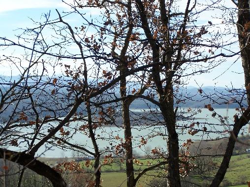 Lac de Montbel en hiver