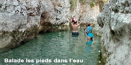 Les Gites du Pic du Comte - La Bergerie Le Toulourenc