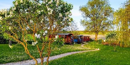 Les Roses de Jonzac Jardin