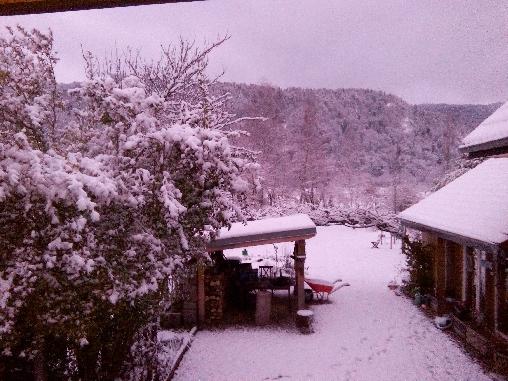 Chambre d'hote Haut-Rhin - Le jardin en hiver