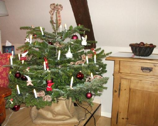 Noël aux Hirondelles