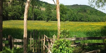 Gîte Les Hirondelles Prairie au fond du jardin
